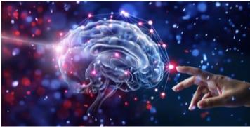 celljectics brain support